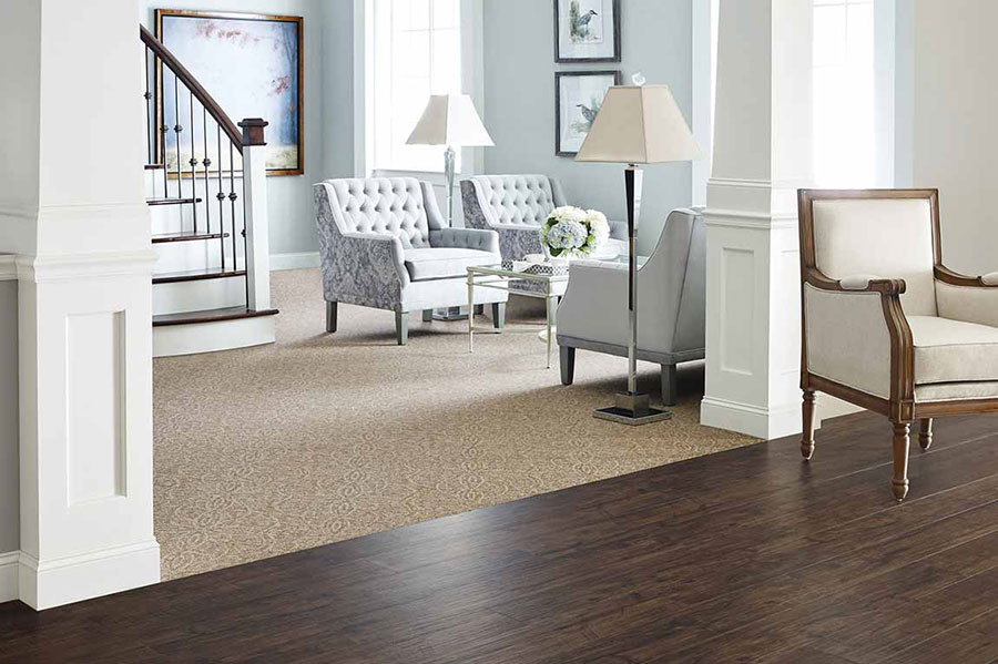 Dark brown hardwood meeting light brown carpet
