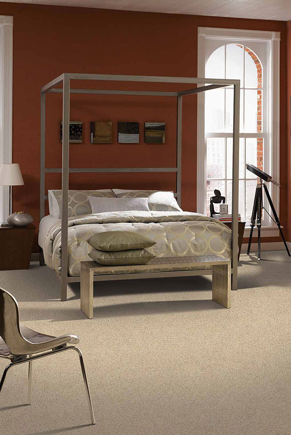 Canopy bed on beige carpet